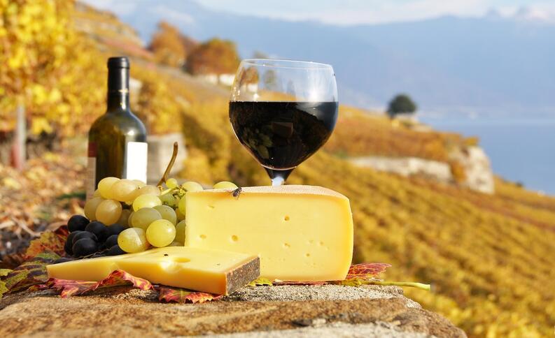 Итальянские красные вина, которые нужно купить на следующий год